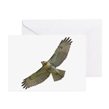 Soaring Red-tail Hawk Greeting Cards (Pk of 10)