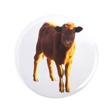"""red angus 3.5"""" Button (100 pack)"""
