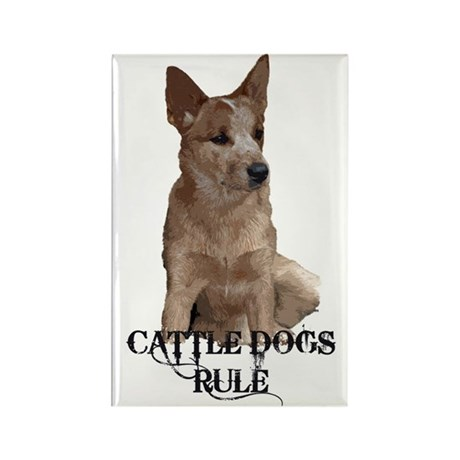 Cattle Dogs Rule Rectangle Magnet