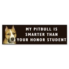 pit bull honor student Bumper Car Car Sticker