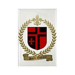 SAINT-QUENTIN Family Crest Rectangle Magnet (100 p