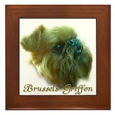 Framed Tile - Brussels Griffon head