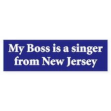 Bruce Springsteen Bumper Stickers