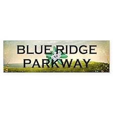 Blue Ridge Americasbesthistory.co Bumper Sticker