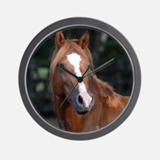 Chincoteague Pony Wall Clock