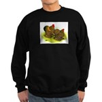 GL Cochin Bantams Sweatshirt (dark)