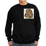 Modena Pigeon Sweatshirt (dark)