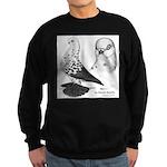 Warsaw Butterfly Pigeon Sweatshirt (dark)