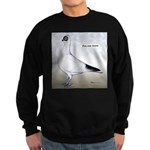 Polish Shortface Pigeon Sweatshirt (dark)