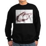 Nesting Pigeons Sweatshirt (dark)