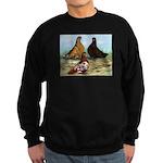 Shortfaced Tumbler Pigeons Sweatshirt (dark)