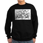 Shortface Tumbler Pigeons Sweatshirt (dark)