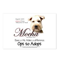 Mocha Postcards (Package of 8)