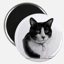Tuxedo Cat Magnet