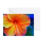 orange hibiscus Greeting Cards (Pk of 10)
