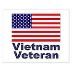 Vietnam Veteran Small Poster