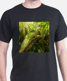 indonesian water dragon T-Shirt