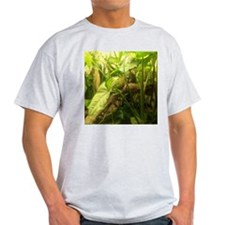 indonesian water dragon T-Shirt