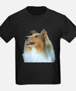 Collie Portrait T