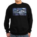 Trans Am Art 2 Sweatshirt (dark)
