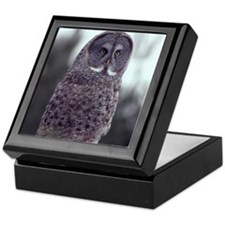 Great Gray Owl Keepsake Box