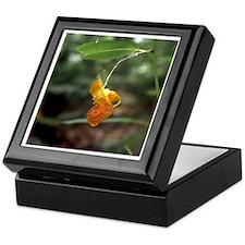 Jewelweed Keepsake Box