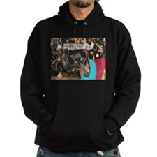 Dachshunds Happy Holidays Hoodie