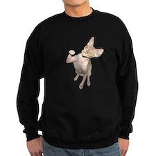 Hairless Cat Sweatshirt