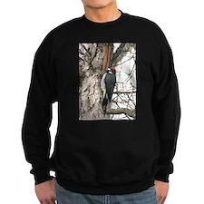Calif. Redhead Woodpecker Sweatshirt