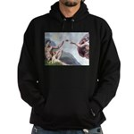 Creation of the Beagle Hoodie (dark)