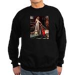 Accolade/Bull Terrier 1 Sweatshirt (dark)