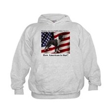 Banning ASTs Hoodie