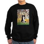 Spring & Border Collie Sweatshirt (dark)
