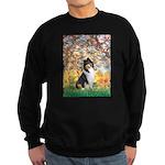 Spring / Collie Sweatshirt (dark)