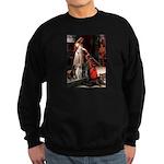 The Accolade & Lab Trio Sweatshirt (dark)