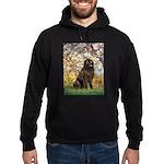 Spring / Newfoundland Hoodie (dark)