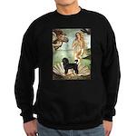 Venus / PWD (#2) Sweatshirt (dark)