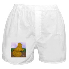 Yellow ET Pigeon Boxer Shorts