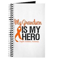 LeukemiaHero Grandson Journal