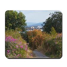Boulevard Trail Mousepad