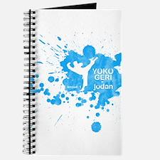 Lesson 1 - Yoko Geri Jodan Journal