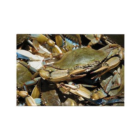 Blue Crabs Rectangle Magnet