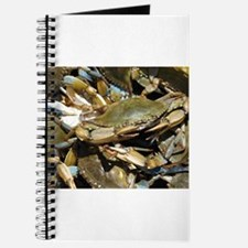 Blue Crabs Journal