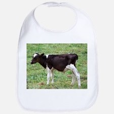 holstein calf Bib