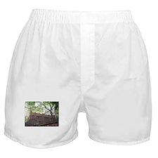 trinity church Boxer Shorts