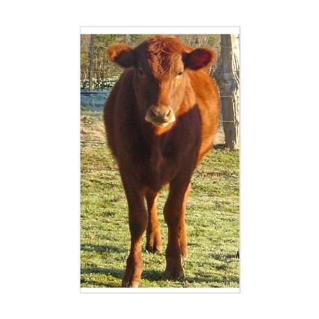 red angus 2 Rectangle Sticker