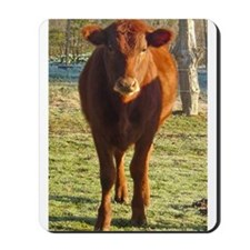 red angus 2 Mousepad