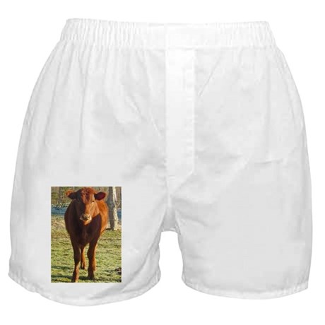 red angus 2 Boxer Shorts