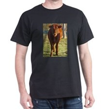 red angus 2 T-Shirt