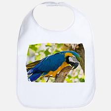 Blue & Gold Macaw Bib
